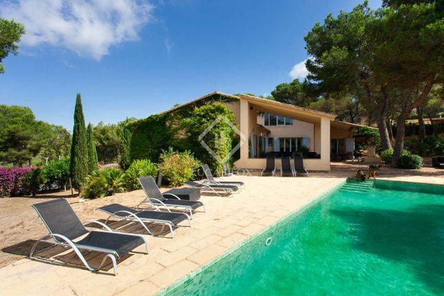 Spain, Barcelona, Sitges, Olivella / Canyelles, Sit102