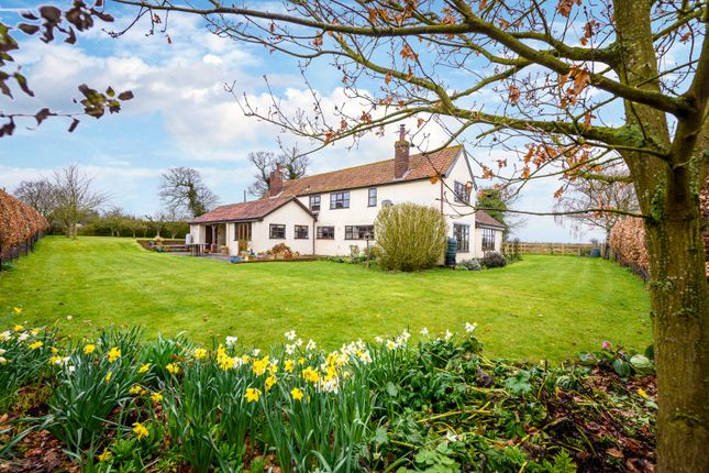 Thumbnail Cottage for sale in Cock Road, Hardley
