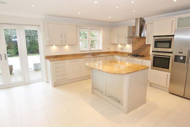 Thumbnail Property to rent in Ellesmere Road, Weybridge
