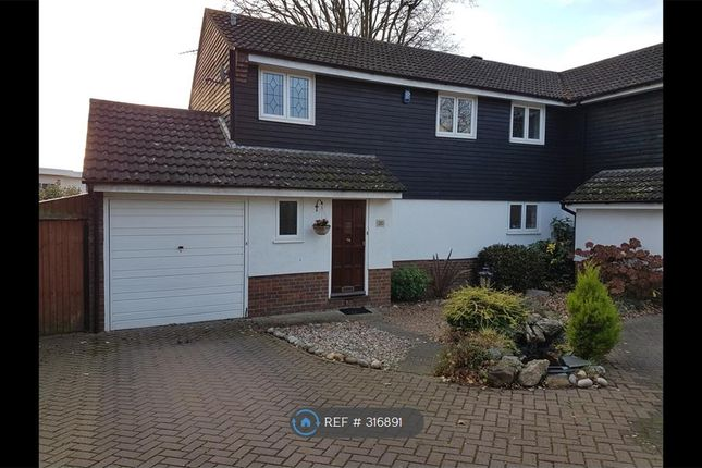 Thumbnail Semi-detached house to rent in Owen Gardens, Woodford Green