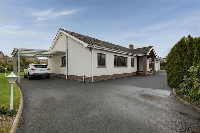 Thumbnail Detached bungalow for sale in Moy Road, Portadown, Craigavon, County Armagh