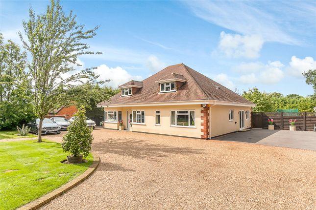 Thumbnail Detached house for sale in Carters Hill, Billingbear, Wokingham, Berkshire