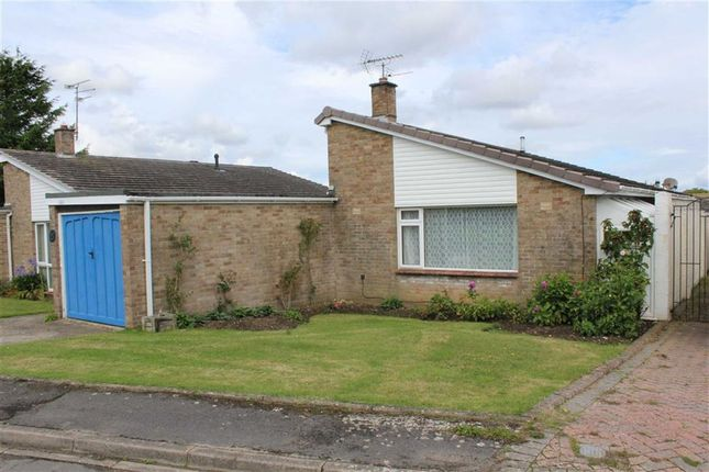 Thumbnail Detached bungalow for sale in Colliers Lane, Wool, Wareham