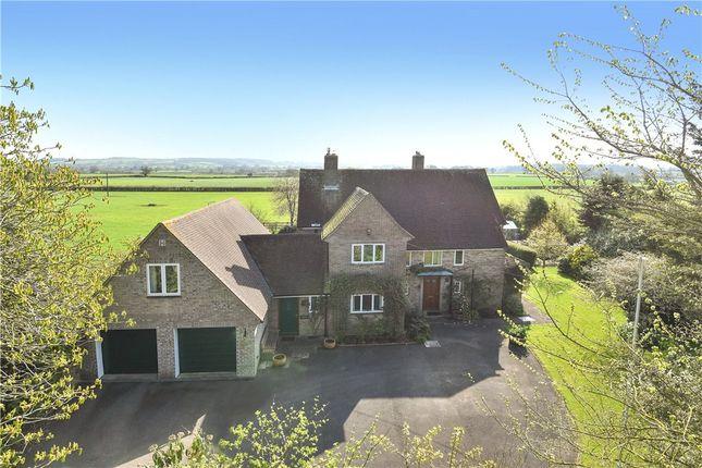 Thumbnail Detached house for sale in Folke, Sherborne, Dorset