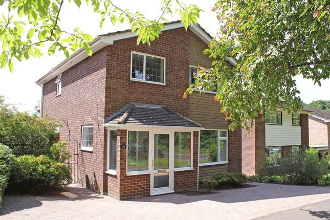 Thumbnail Detached house for sale in Coxford Road, Southampton