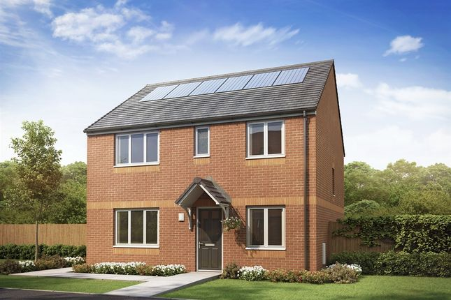 """Thumbnail Detached house for sale in """"The Thurso"""" at Etna Road, Falkirk"""