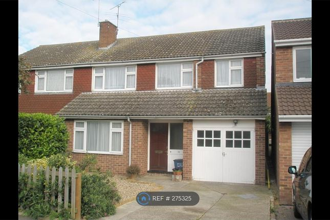 Thumbnail Room to rent in Marlowe Close, Maldon