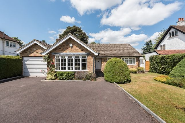 Thumbnail Bungalow to rent in Assheton Road, Beaconsfield