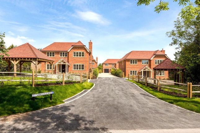 Thumbnail Country house for sale in Langdale Rise, Cliddesden, Basingstoke