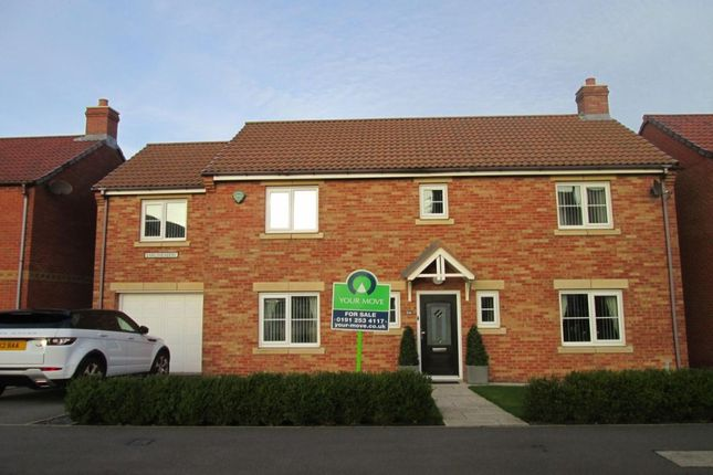 Thumbnail Detached house to rent in Earlsmeadow, Shiremoor, Newcastle Upon Tyne