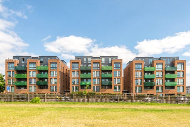 Picture No. 12 of Sunflower Court, Finsbury Park, London N4