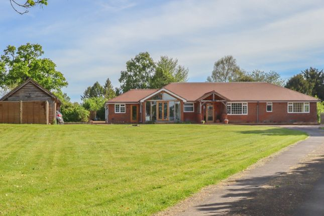 5 bed detached bungalow for sale in Petersfield Road, Ropley, Alresford SO24