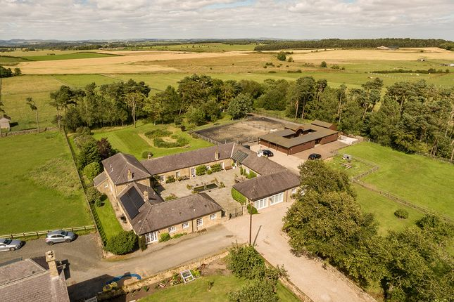 Thumbnail Barn conversion for sale in The Courtyard, Wallridge, Ingoe, Northumberland