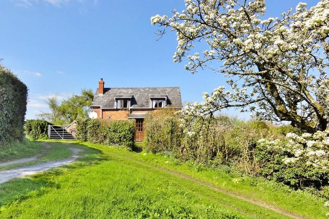 Thumbnail Detached house to rent in Coombe Hill Cottage, Coddington, Ledbury, Herefordshire