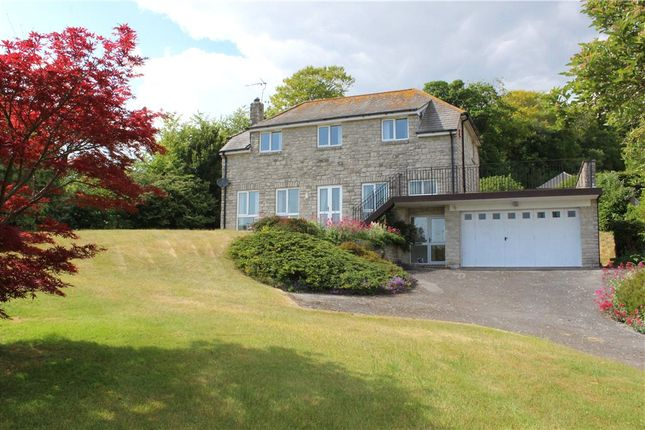 Thumbnail Detached house for sale in The Paddocks, Litton Cheney, Dorchester