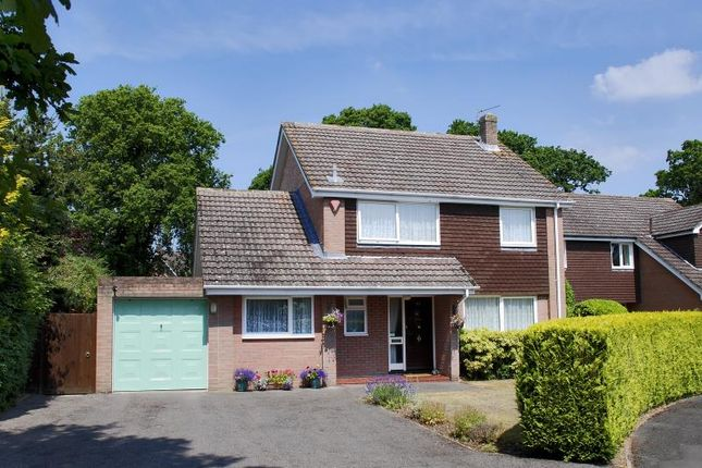 Thumbnail Detached house to rent in Brockenhurst, Hampshire