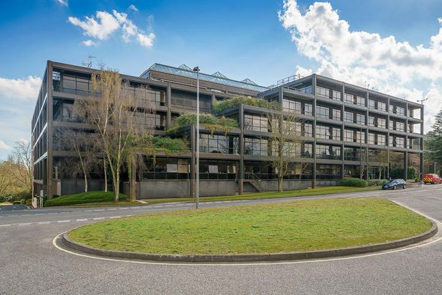Thumbnail Office to let in Bizspace - Belvedere, Basing View, Basingstoke