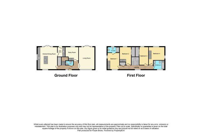 Floor Plan of Hemblington, Norwich NR13
