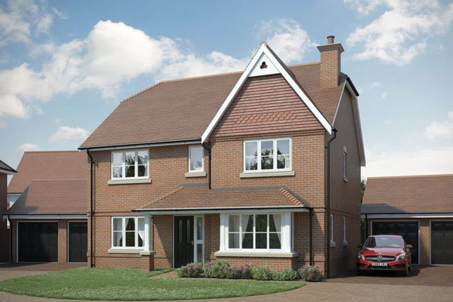 "Thumbnail Property for sale in ""The Laurel"" at Brook Close, Storrington, Pulborough"