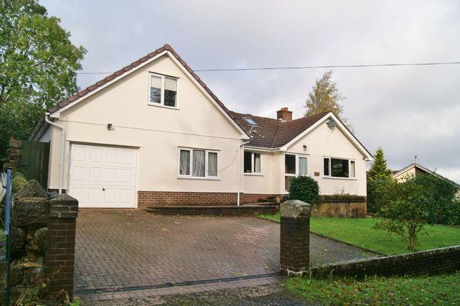 Thumbnail Detached house to rent in Prospect Hill, Okehampton