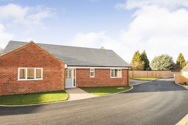 Thumbnail Detached bungalow for sale in Corrina Gardens, Rushden
