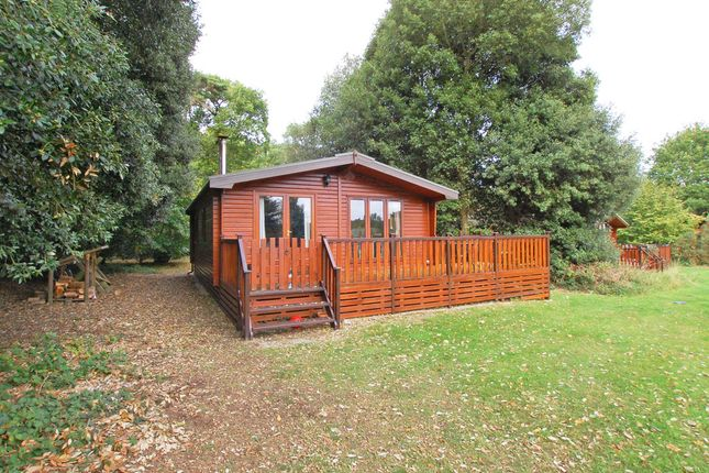 Thumbnail Detached bungalow for sale in Church Lane, Fritton, Great Yarmouth