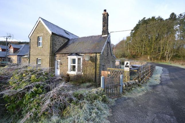 Thumbnail Semi-detached house for sale in Station House, Langholm Street Newcastleton