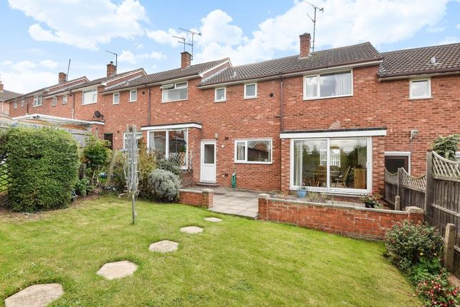 Thumbnail Terraced house to rent in South City, Hereford