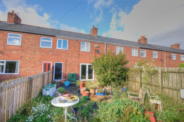 Thumbnail Terraced house for sale in Second Row, Linton Colliery, Morpeth