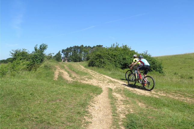 Picture No. 10 of Amberley Ridge, Rodborough Common, Stroud, Gloucestershire GL5