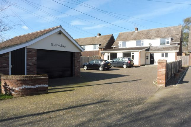 Thumbnail Detached house for sale in Bungay Road, Scole, Diss