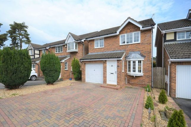 Thumbnail Detached house for sale in Linnet Road, Poole