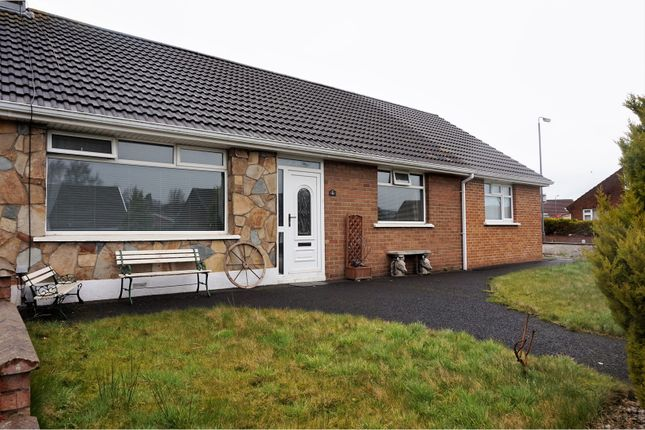 Thumbnail Semi-detached bungalow for sale in Ashburn Avenue, Londonderry