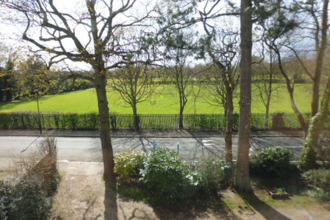 View From Lounge of Buckingham Road, Hampton TW12