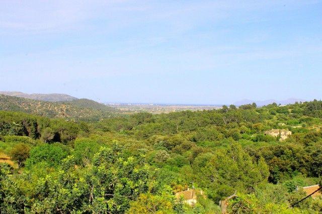 Views of Spain, Mallorca, Campanet