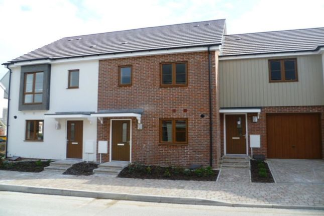 Thumbnail Terraced house to rent in Peggs Way, Basingstoke
