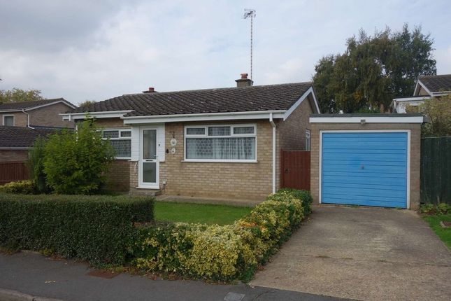 Thumbnail Detached bungalow to rent in Chichester Road, Halesworth
