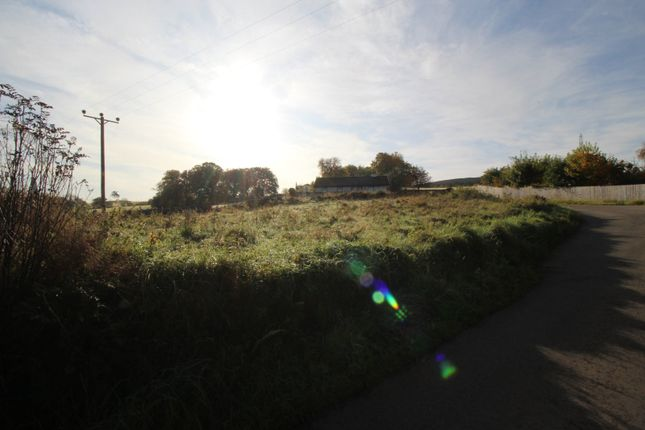 Picture No. 15 of The Plot Kincardine Hill, Ardgay, Sutherland IV24