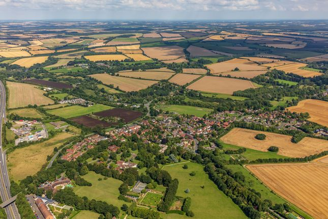 Thumbnail Commercial property for sale in The Avenue, Winchester Hill, Sutton Scotney, Winchester