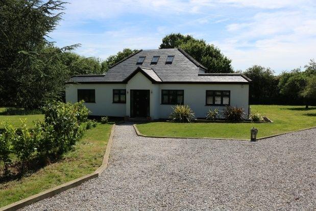 Thumbnail Bungalow to rent in Woolmongers Lane, Ingatestone