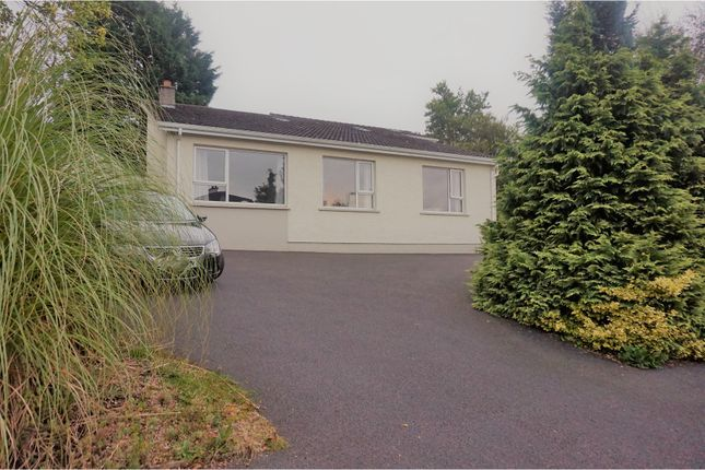 Thumbnail Detached house for sale in Crewe Drive, Maghera