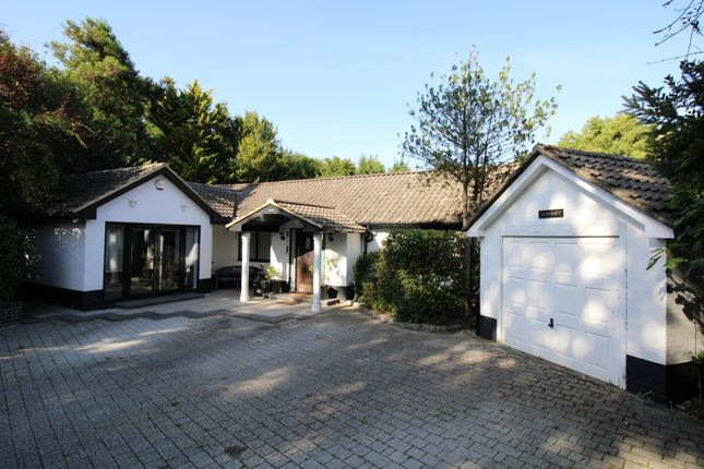 Thumbnail Detached bungalow to rent in Lingfield, Surrey