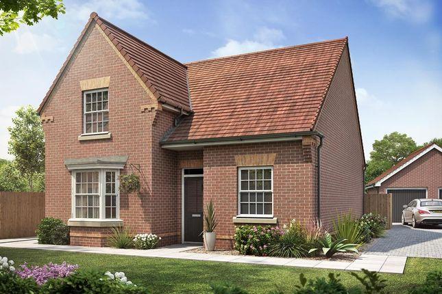 Thumbnail Detached bungalow for sale in St James Place, Clanfield