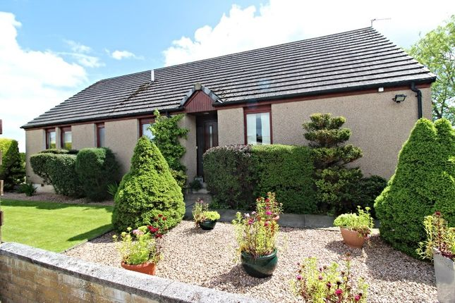 Thumbnail Detached bungalow for sale in Lochside, Montrose