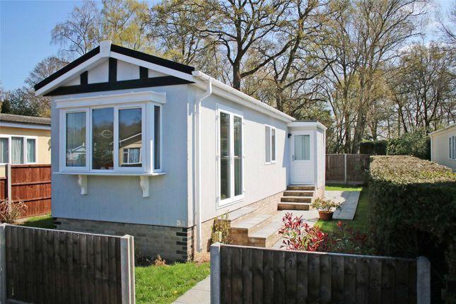 Thumbnail Detached house for sale in Warren Lane, Pyrford, Surrey