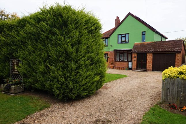 Thumbnail Detached house for sale in The Heath, Dedham