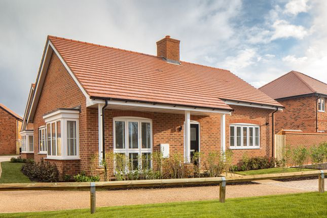 Thumbnail Detached bungalow for sale in Sweeters Field, Loxwood Road, Alfold