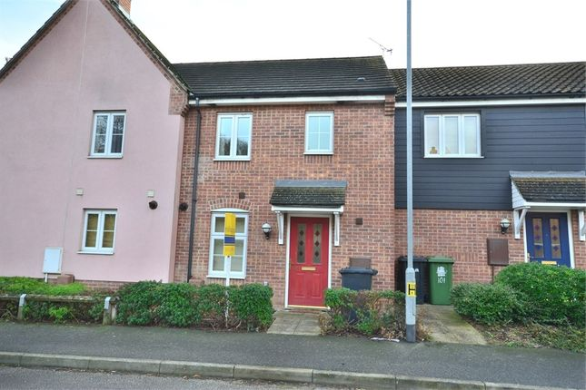 Thumbnail Terraced house for sale in Anthony Nolan Road, King's Lynn