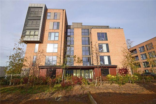 Thumbnail Flat to rent in Dakins House, Beech Drive, Cambridge