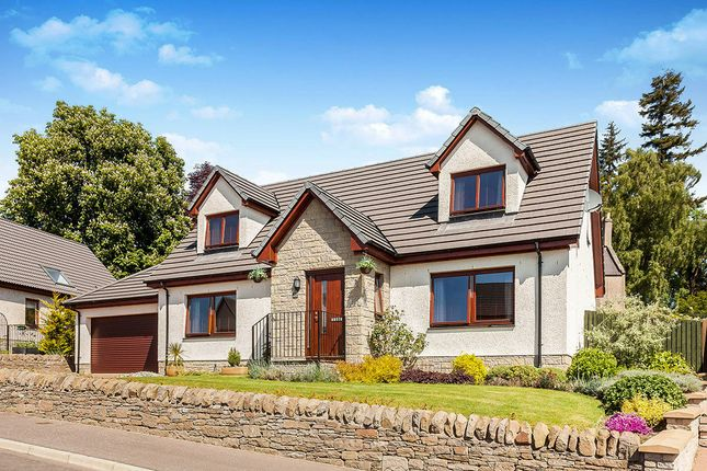 Thumbnail Detached house for sale in Bearehill Loan, Brechin